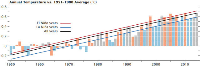 Annual Temp for all La Nina and El Nino years.jpg