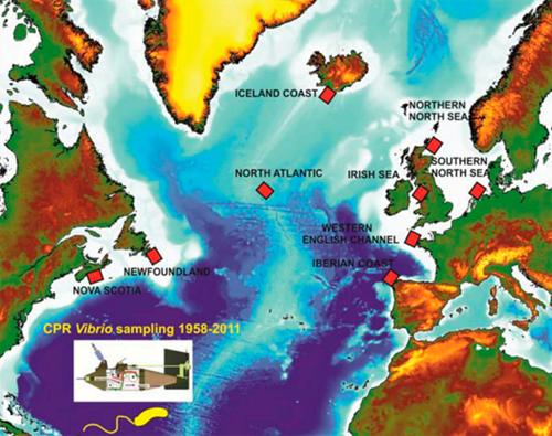 Vezzulli et al 2016 - Fig1 - Sampling Areas.png
